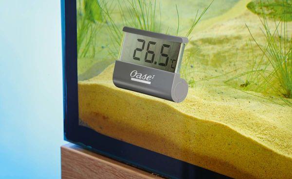 Топ 5 самых лучших термометров для аквариума